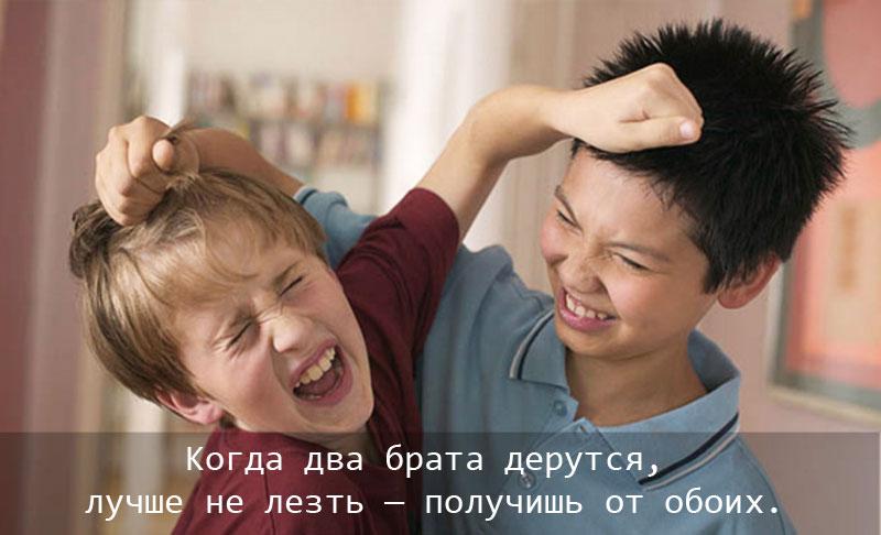 Сестра брату и другу